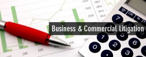 Business Commercial Litigation